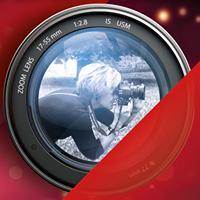 Ju La's Welt / Fotoshooting / Portrait / Hochzeit / Babybauch